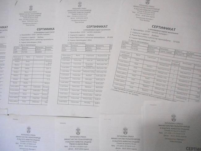sertifikat1 Katalog Sadnica